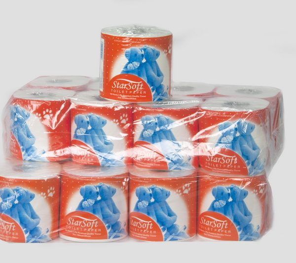 TOILET_ROLLS_TEDDY_BEAR_2_PACKS_1_ROLL